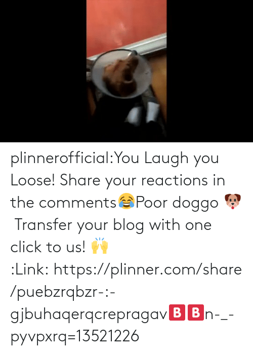 Us: plinnerofficial:You Laugh you Loose! Share your reactions in the comments😂Poor doggo 🐶 Transfer your blog with one click to us! 🙌 :Link: https://plinner.com/share/puebzrqbzr-:-gjbuhaqerqcrepragav🅱🅱n-_-pyvpxrq=13521226