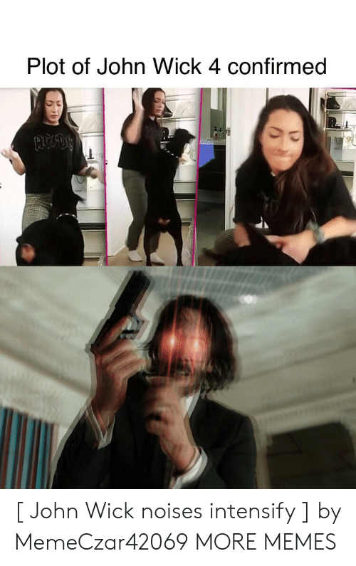 Confirmed: Plot of John Wick 4 confirmed [ John Wick noises intensify ] by MemeCzar42069 MORE MEMES