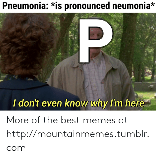 Memes, Tumblr, and Best: Pneumonia: *is pronounced neumonia*  P  I don't even know why I'm here More of the best memes at http://mountainmemes.tumblr.com