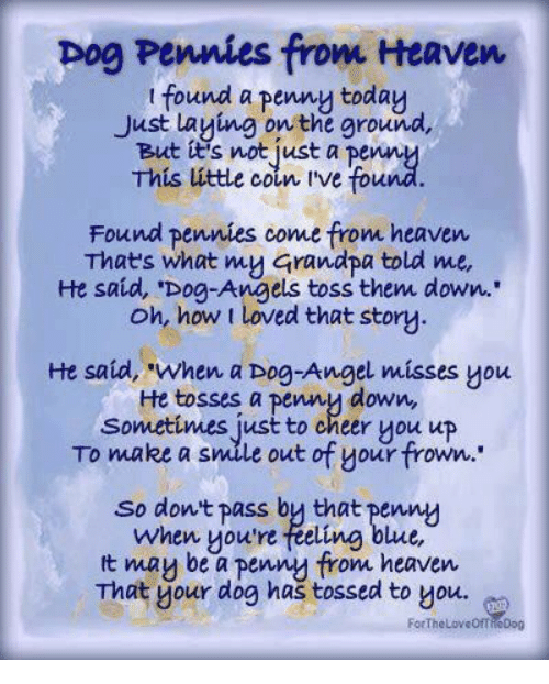 """To Cheer You Up: pog Pennies from Heaven  t found a penny today  Just Laying on the ground,  But tt's not just a penn  This úttle coin ive fou  Found pennies come from heaven  Thats what my Grandpa told me,  He said, 'Dog-Angels toss them down..  oh, how t loved that story  He said, """"when a Dog-Angel misses you  He tosses a penny down,  Sonmetimes just to cheer you up  To make a smile out of your frown.  So dont pass by that penny  when youre feeling blue,  t mau be a pennu from heaven  That your dog has tossed to you.  ForTheLoveOfT  ieDog"""