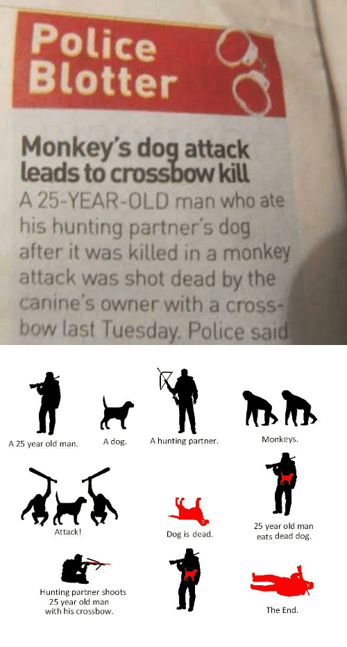 crossbow: Police  Blotter  Monkey's dog attack  leads to crossbow kill  A 25-YEAR-OLD man who ate  his hunting partner's dog  after it was killed in a monkey  attack was shot dead by the  canine's owner with a cross-  bow last Tuesday. Police sai   Monkeys  A 25 year old man A dog. A hunting partner.  25 year old man  eats dead dog.  Attack!  Dog is dead.  Hunting partner shoots  25 year old man  with his crossbow.  The End.