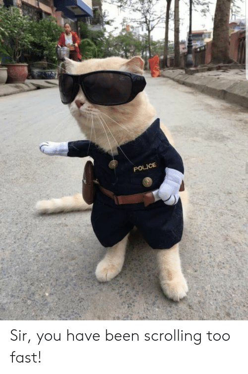 Police, Been, and Fast: POLICE Sir, you have been scrolling too fast!