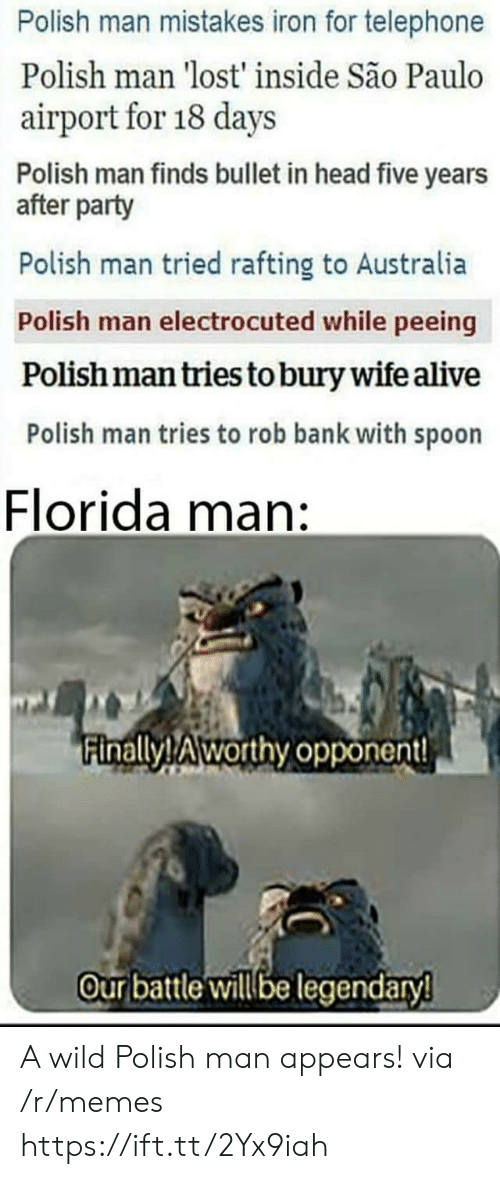 telephone: Polish man mistakes iron for telephone  Polish man 'lost' inside São Paulo  airport for 18 days  Polish man finds bullet in head five years  after party  Polish man tried rafting to Australia  Polish man electrocuted while peeing  Polish man tries to bury wife alive  Polish man tries to rob bank with spoon  Florida man:  inallyTAworthy opponent!  Our batle illbe legendary A wild Polish man appears! via /r/memes https://ift.tt/2Yx9iah