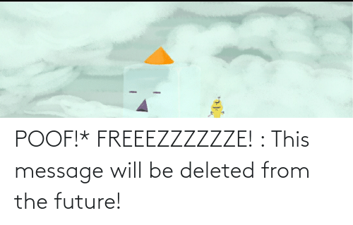 poof: POOF!* FREEEZZZZZZE! : This message will be deleted from the future!
