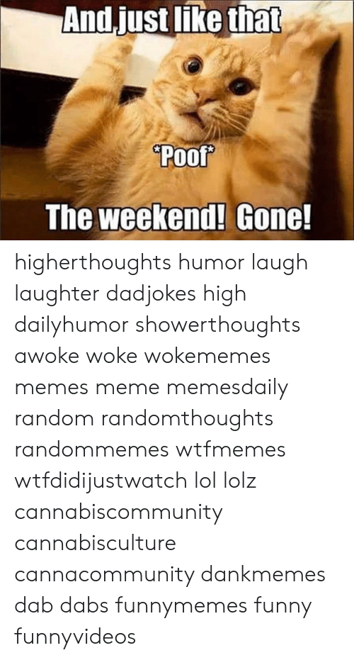 The Dab, Funny, and Lol: Poof  The weekend! Gone! higherthoughts humor laugh laughter dadjokes high dailyhumor showerthoughts awoke woke wokememes memes meme memesdaily random randomthoughts randommemes wtfmemes wtfdidijustwatch lol lolz cannabiscommunity cannabisculture cannacommunity dankmemes dab dabs funnymemes funny funnyvideos