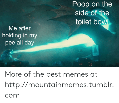 Poop: Poop on the  side of the  toilet bowl  Me after  holding in my  pee all day More of the best memes at http://mountainmemes.tumblr.com