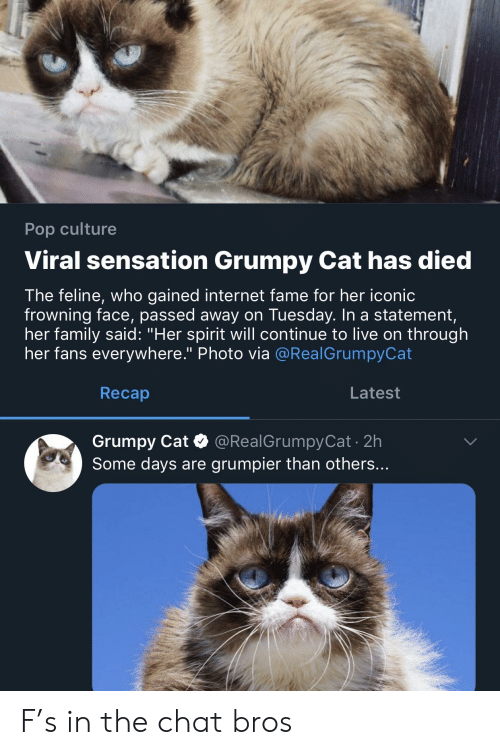 "Family, Internet, and Pop: Pop culture  Viral sensation Grumpy Cat has died  The feline, who gained internet fame for her iconic  frowning face, passed away on Tuesday. In a statement,  her family said: ""Her spirit will continue to live on through  her fans everywhere."" Photo via @RealGrumpyCat  Recap  Latest  Grumpy Cat @RealGrumpyCat 2h  Some days are grumpier than others... F's in the chat bros"