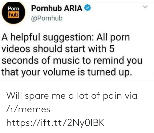 Spare Me: Porn  hub  Pornhub ARIA  @Pornhub  A helpful suggestion: All porn  videos should start with 5  seconds of music to remind you  that your volume is turned up. Will spare me a lot of pain via /r/memes https://ift.tt/2Ny0IBK