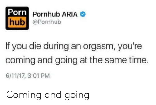 Pornhub, Orgasm, and Porn: Porn Pornhub ARIA  hub @Pornhub  If you die during an orgasm, you're  coming and going at the same time  6/11/17, 3:01 PM Coming and going