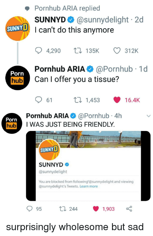 Pornhub, SunnyD, and Porn: Pornhub ARIA replied  SUNNYD @sunnydelight 2d  I can't do this anymore  SUNNYD  4,290 t135K  312K  Pornhub ARIA@Pornhub 1d  Porn  hubCan I offer you a tissue?  61  ti 1453  16.4K  Pornhub ARIA @Pornhub 4h  Porn  hubI WAS JUST BEING FRIENDLY  SUNNYD  SUNNYD  @sunnydelight  You are blocked from following esunnydelight and viewing  @sunnydelight's Tweets. Learn more  t 244  1903 surprisingly wholesome but sad