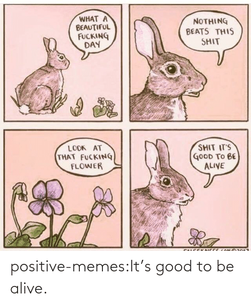 Positive Memes Tumblr: positive-memes:It's good to be alive.