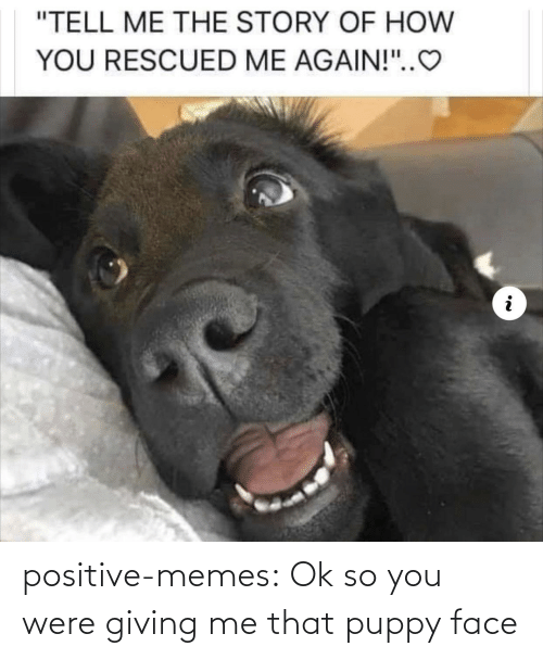 positive: positive-memes:  Ok so you were giving me that puppy face