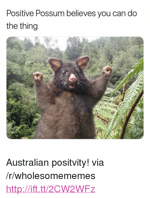"""Http, Possum, and Australian: Positive Possum believes you can do  the thing <p>Australian positvity! via /r/wholesomememes <a href=""""http://ift.tt/2CW2WFz"""">http://ift.tt/2CW2WFz</a></p>"""