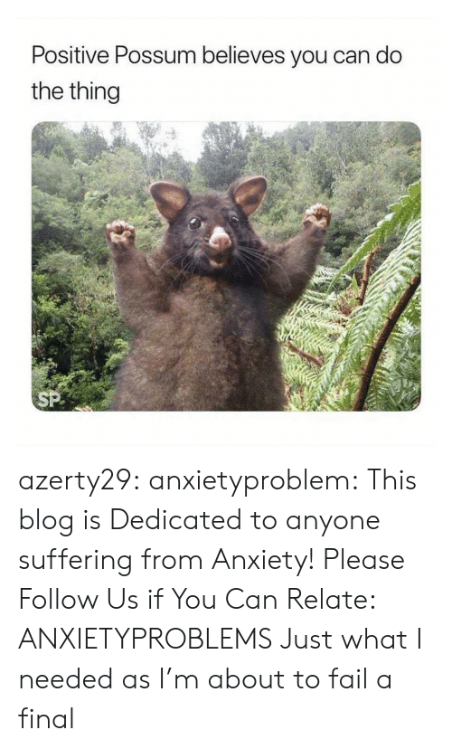 Fail, Tumblr, and Anxiety: Positive Possum believes you can do  the thing azerty29: anxietyproblem:  This blog is Dedicated to anyone suffering from Anxiety! Please Follow Us if You Can Relate: ANXIETYPROBLEMS  Just what I needed as I'm about to fail a final