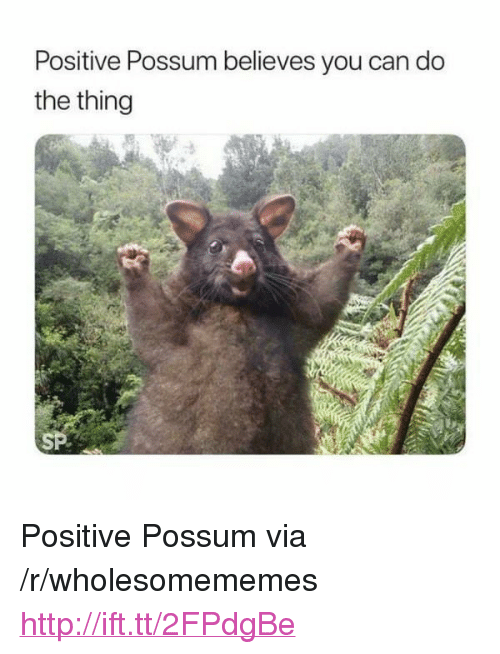 """Http, Possum, and The Thing: Positive Possum believes you can do  the thing  SP <p>Positive Possum via /r/wholesomememes <a href=""""http://ift.tt/2FPdgBe"""">http://ift.tt/2FPdgBe</a></p>"""