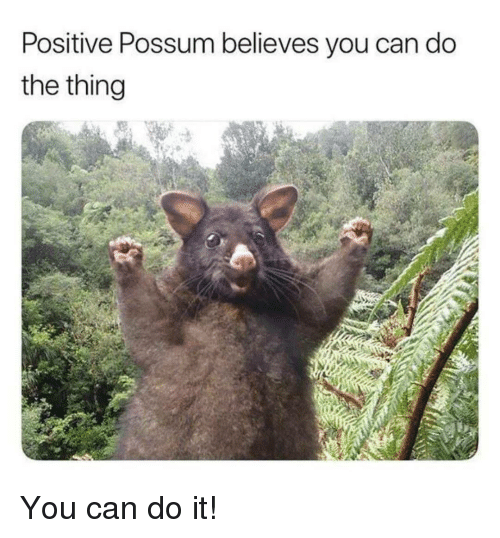 Possum, The Thing, and Can: Positive Possum believes you can do  the thing You can do it!