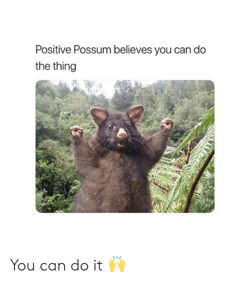 Possum, The Thing, and Can: Positive Possum believes you can do  the thing You can do it 🙌