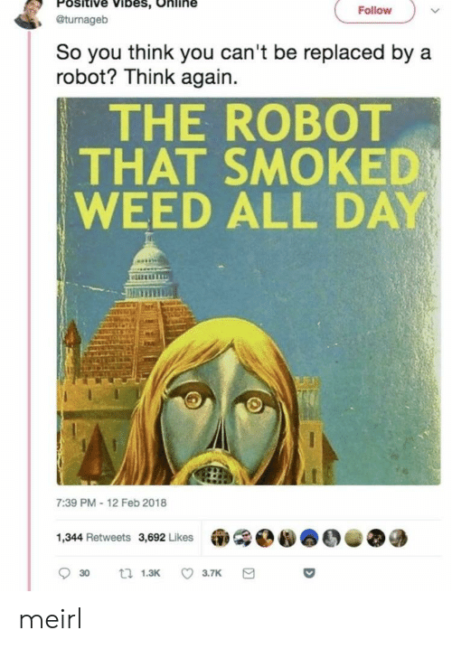 Feb 2018: Positive Vibes, Online  , @turnageb  Follovw  So you think you can't be replaced by a  robot? Think again.  THE ROBOT  THAT SMOKED  WEED ALL DAY  liz  7:39 PM-12 Feb 2018  1,344 Retweets 3,692 Likes meirl