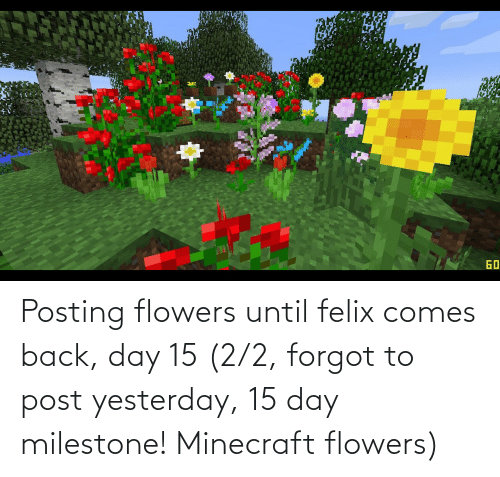 15 2: Posting flowers until felix comes back, day 15 (2/2, forgot to post yesterday, 15 day milestone! Minecraft flowers)