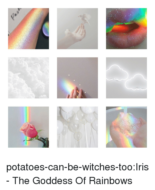 Iris: potatoes-can-be-witches-too:Iris - The Goddess Of Rainbows