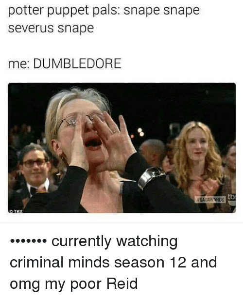 Palsing: potter puppet pals: snape snape  Severus Snape  mee: DUMBLEDORE  tb  ASAGAWARDS ••••••• currently watching criminal minds season 12 and omg my poor Reid