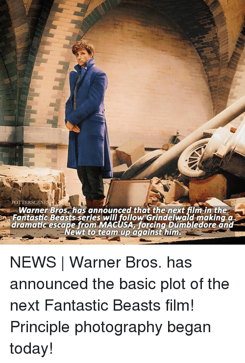 fantastic beasts: POTTERSCENES  Warner Bros. has announced that the next film in the  aFantastic Beasts series will follow Grindelwald making q  dramatic escape from MACUSA, forcing Dumbledore and  ewt to team-up against him NEWS | Warner Bros. has announced the basic plot of the next Fantastic Beasts film! Principle photography began today!