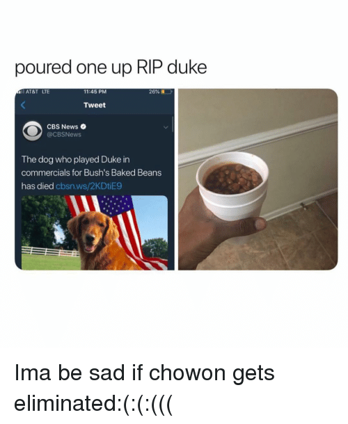 baked beans: poured one up RIP duke  AT&T LTE  11:45 PM  26%  Tweet  CBS News  @CBSNews  The dog who played Duke in  commercials for Bush's Baked Beans  has died cbsn.ws/2KDtiE9 Ima be sad if chowon gets eliminated:(:(:(((