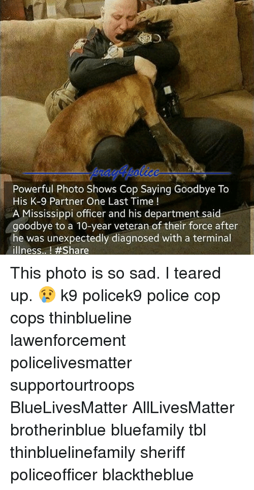 Teared Up: Powerful Photo Shows Cop Saying Goodbye To  His K-9 Partner One Last Time  A Mississippi officer and his department said  goodbye to a 10-year veteran of their force after  he was unexpectedly diagnosed with a terminal  illness.. This photo is so sad. I teared up. 😢 k9 policek9 police cop cops thinblueline lawenforcement policelivesmatter supportourtroops BlueLivesMatter AllLivesMatter brotherinblue bluefamily tbl thinbluelinefamily sheriff policeofficer blacktheblue