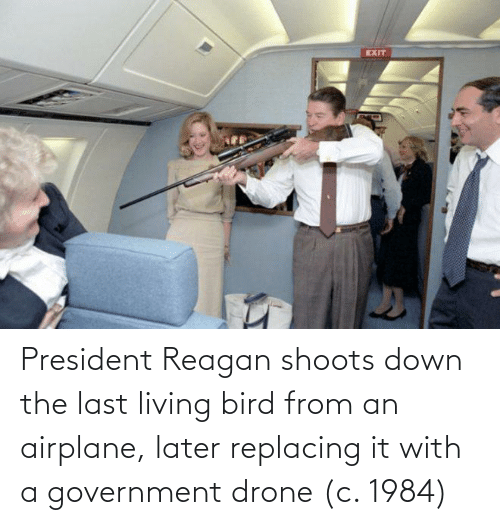 Government: President Reagan shoots down the last living bird from an airplane, later replacing it with a government drone (c. 1984)