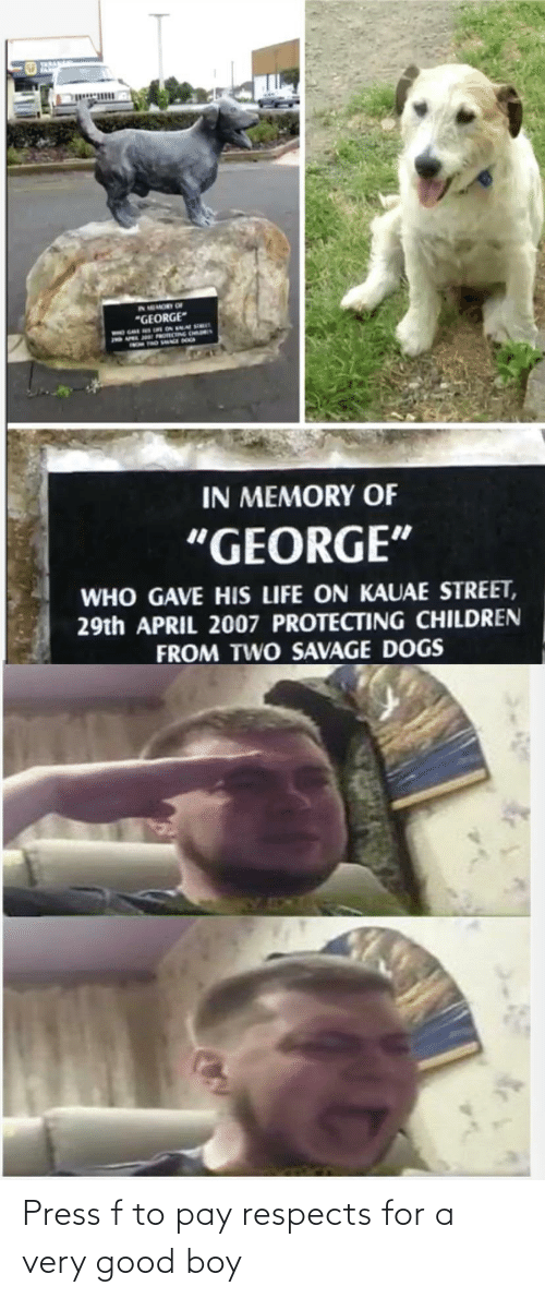 press: Press f to pay respects for a very good boy