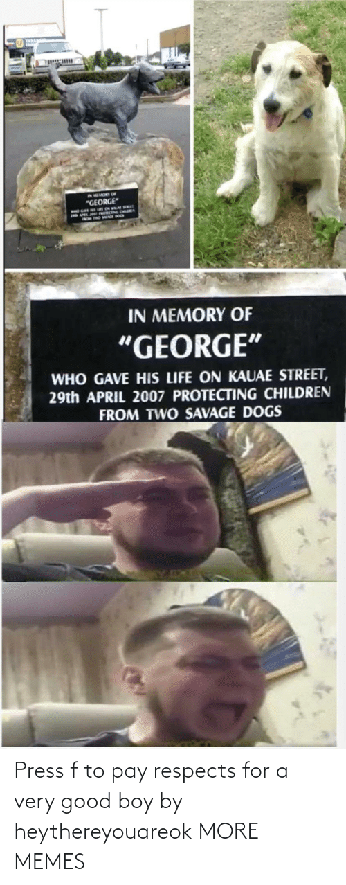 press: Press f to pay respects for a very good boy by heythereyouareok MORE MEMES