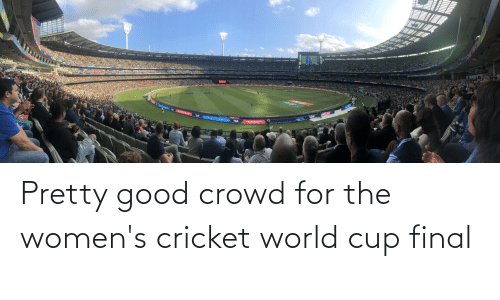 World Cup: Pretty good crowd for the women's cricket world cup final