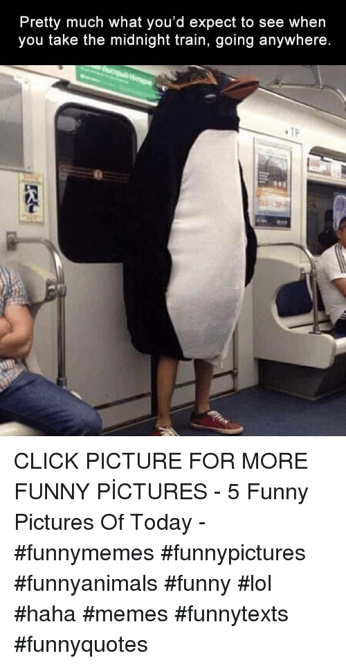Click, Funny, and Lol: Pretty much what you'd expect to see when  you take the midnight train, going anywhere.  TP CLICK PICTURE FOR MORE FUNNY PİCTURES - 5 Funny Pictures Of Today - #funnymemes #funnypictures #funnyanimals #funny #lol #haha #memes #funnytexts #funnyquotes