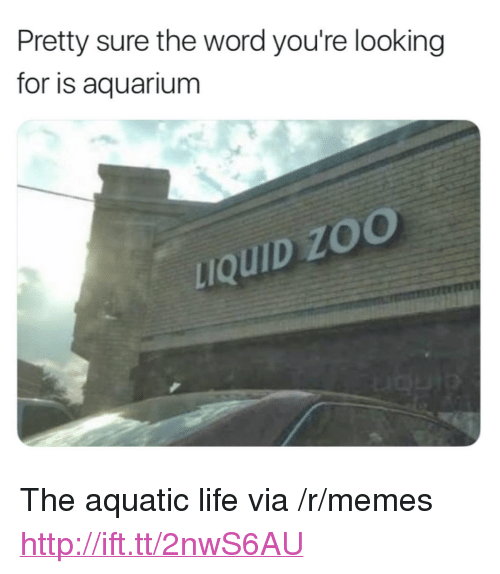 "Life, Memes, and Aquarium: Pretty sure the word you're looking  for is aquarium  uQUID ZO <p>The aquatic life via /r/memes <a href=""http://ift.tt/2nwS6AU"">http://ift.tt/2nwS6AU</a></p>"