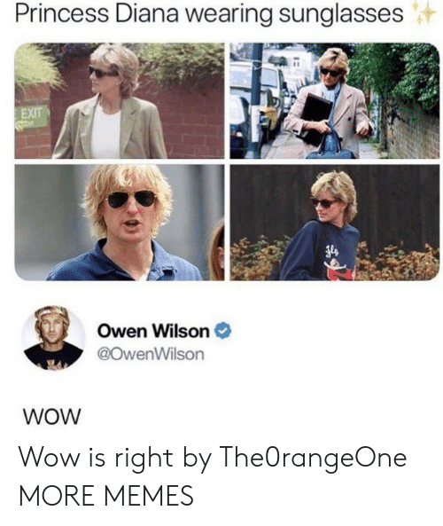 Sunglasses: Princess Diana wearing sunglasses  EXIT  Owen Wilson  @OwenWilson  WOW Wow is right by The0rangeOne MORE MEMES