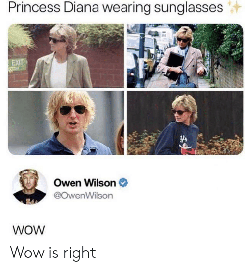 Sunglasses: Princess Diana wearing sunglasses  EXIT  Owen Wilson  @OwenWilson  WOW Wow is right