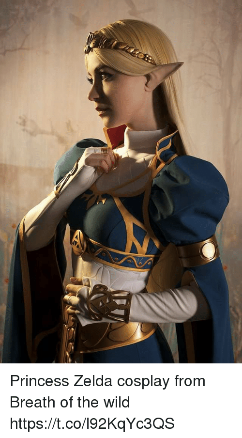 Princess Zelda Cosplay From Breath Of The Wild