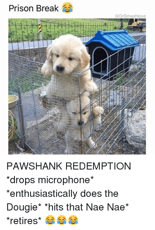 nae nae: Prison Break  @DrSmashlove PAWSHANK REDEMPTION *drops microphone* *enthusiastically does the Dougie* *hits that Nae Nae* *retires* 😂😂😂