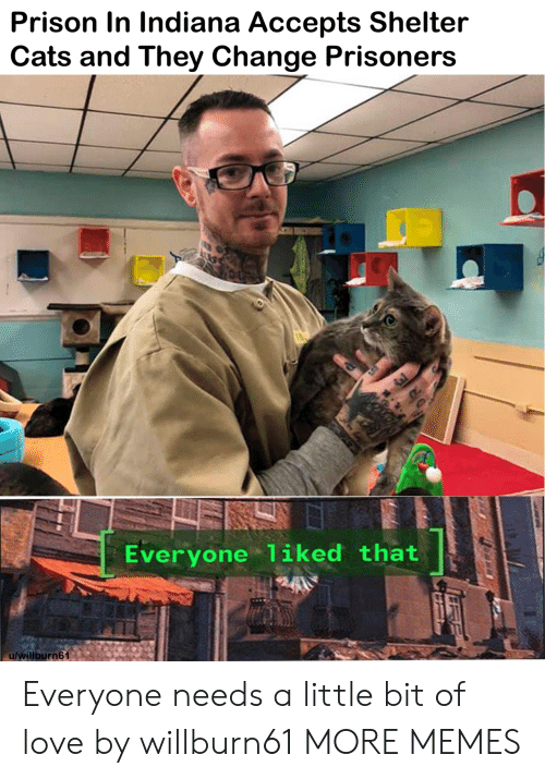 prisoners: Prison In Indiana Accepts Shelter  Cats and They Change Prisoners  Everyone liked that  u/willburn61 Everyone needs a little bit of love by willburn61 MORE MEMES