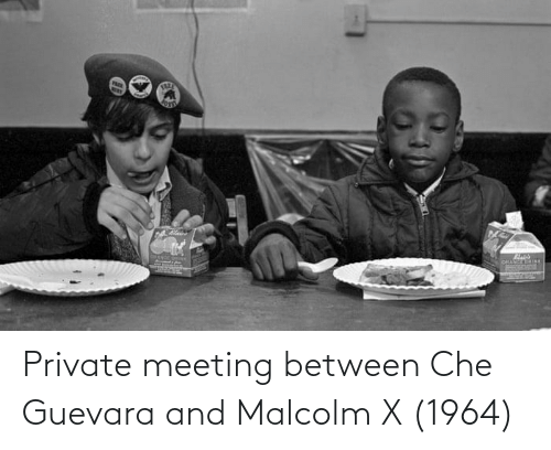 malcolm: Private meeting between Che Guevara and Malcolm X (1964)