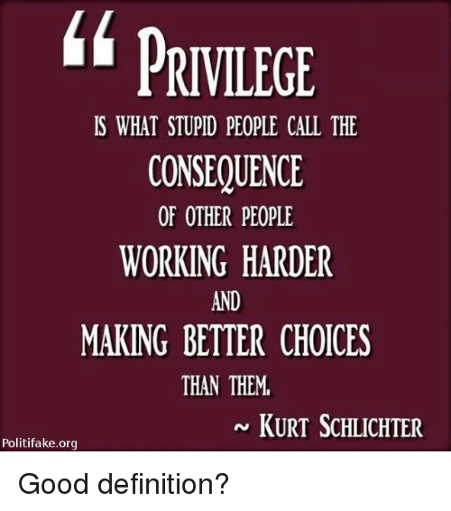 Memes, Definition, and Good: PRIVILEGE  IS WHAT STUPID PEOPLE CALL THE  CONSEQUENCE  OF OTHER PEOPLE  WORKING HARDER  AND  MAKING BETTER CHOICES  THAN THEM  KURT ScHLICHTER  Politifake.org Good definition?
