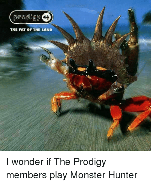 Prodigy The Fat Of The Land I Wonder If The Prodigy Members Play
