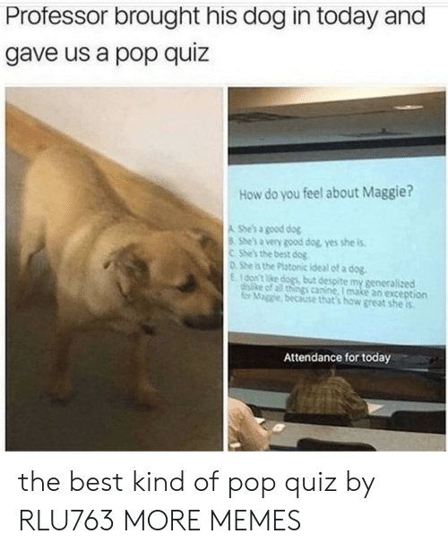 for today: Professor brought his dog in today and  gave us a pop quiz  How do you feel about Maggie?  A She's a good dog  8 She's a very good dog, yes she is  CShe's the best dog  DShe is the Platonic ideal of a dog.  E16on't ke dogs but despite my generalized  disike of all things canine, I make an exception  for Maggie, because that's how great she is  Attendance for today the best kind of pop quiz by RLU763 MORE MEMES