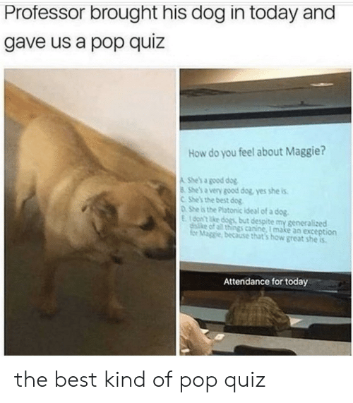 for today: Professor brought his dog in today and  gave us a pop quiz  How do you feel about Maggie?  A She's a good dog  8 She's a very good dog, yes she is  CShe's the best dog  DShe is the Platonic ideal of a dog.  E16on't ke dogs but despite my generalized  disike of all things canine, I make an exception  for Maggie, because that's how great she is  Attendance for today the best kind of pop quiz