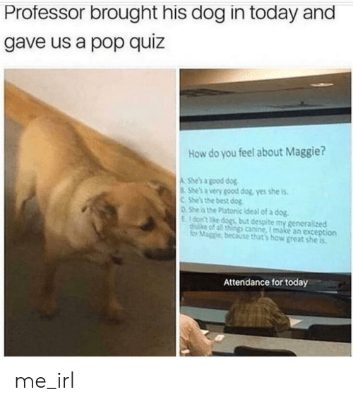 for today: Professor brought his dog in today and  gave us a pop quiz  How do you feel about Maggie?  A She's a good dog  8 She's a very good dog, yes she is  CShe's the best dog  0She is the Platonic ideal of a dog.  E100n't ke dogs but despite my generalized  disike of all things canine, I make an exception  for Maggie, because that's how great she is  Attendance for today me_irl