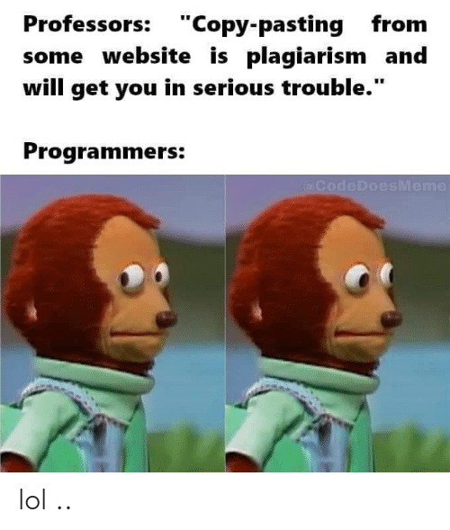 """Lol, Website, and Plagiarism: Professors: """"Copy-pasting from  some website is plagiarism and  will get you in serious trouble.""""  Programmers:  (@CodeDoesMeme lol .."""