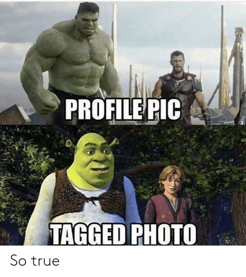 True, Tagged, and Photo: PROFILE PIC  TAGGED PHOTO So true