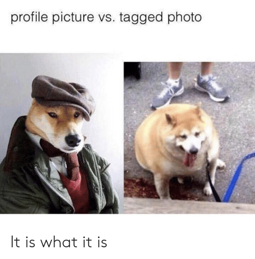 Profile Picture: profile picture vs. tagged photo It is what it is