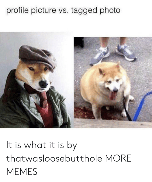 Profile Picture: profile picture vs. tagged photo It is what it is by thatwasloosebutthole MORE MEMES