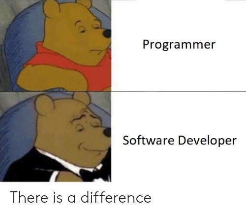 Software, Developer, and Software Developer: Programmer  Software Developer There is a difference